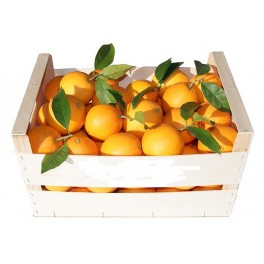 Orange Navelina table 10 Kg